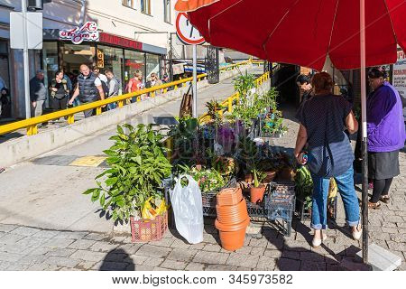 Kutaisi, Georgia, October 13, 2019 : A Flower Seller Sells Flowers On A Street Near The Market In Th