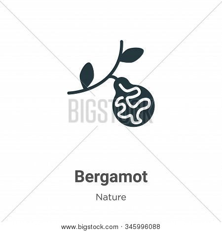 Bergamot icon isolated on white background from nature collection. Bergamot icon trendy and modern B