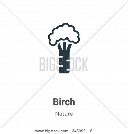 Birch icon isolated on white background from nature collection. Birch icon trendy and modern Birch s