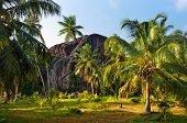 Seychelles natural wonder form the L'Union Boulder is classified as a National Monument. The granite boulder was formed during the Precambrian around 750 million years ago poster