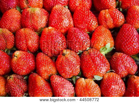 Strawberries In Thailand
