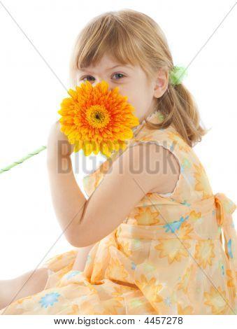 Girl With Daisy