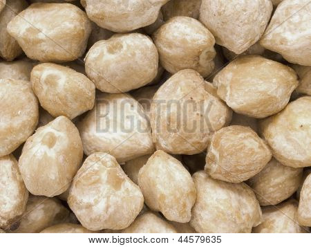 White Candlenuts