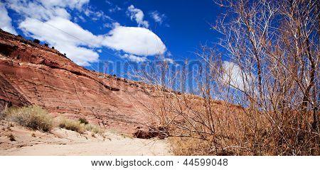 Paria Canyon Landscape