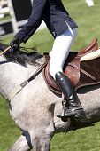 A horsewoman ready for a equestrian competition poster