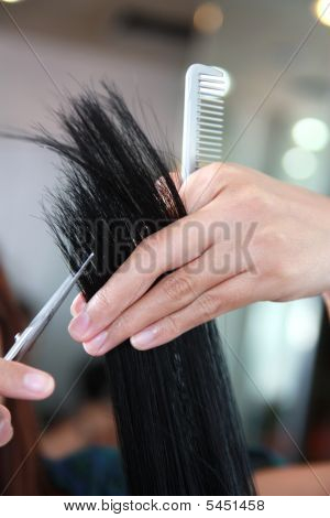 Human Hand Of Salon Staff Working On Human Hair