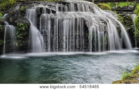 Forest Curtain Waterfall