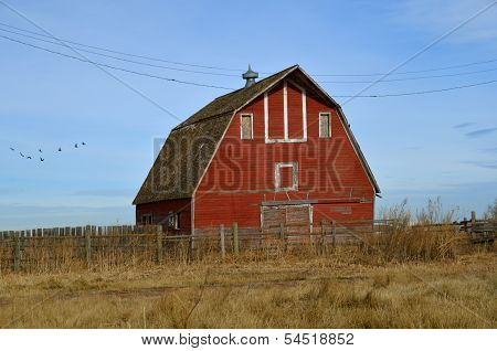 A fence and weeds surround an empty barn