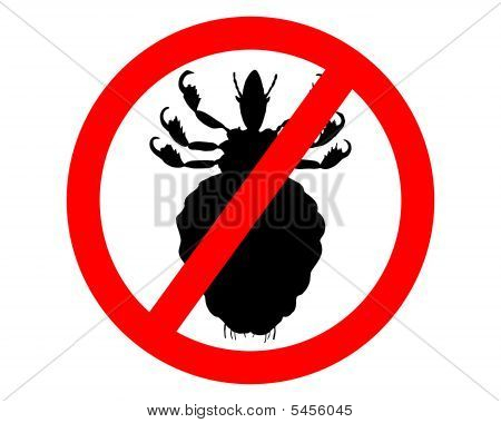 Prohibition Sign For Lice On White Background