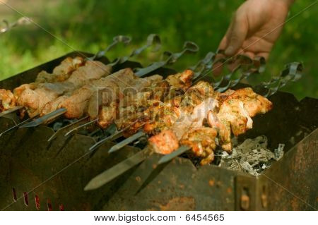 Shashlik At Nature