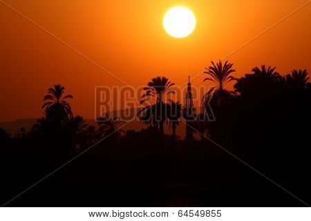 Sunset somewhere in the eastern worls (palm trees and a mosque with minaret as a silhouetts)