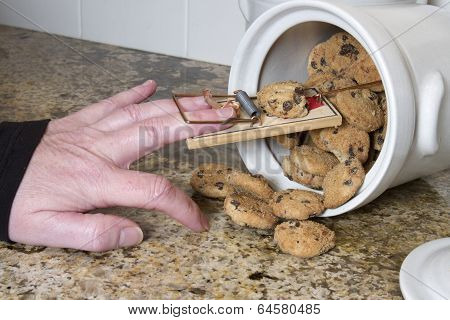 Mousetrap in Cookie Jar