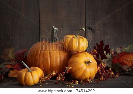Still life harvest with pumpkins and gourds for Thanksgiving
