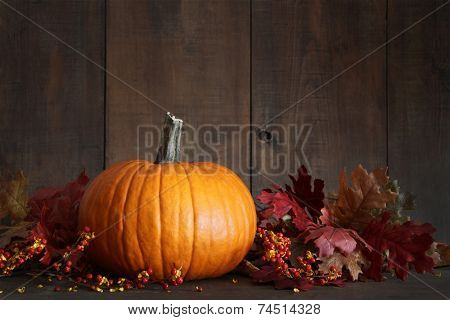 Harvested pumpkin and berries on wood table for Thanksgiving