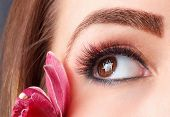 Closeup Of Colorful Eyelash Extensions with flower poster
