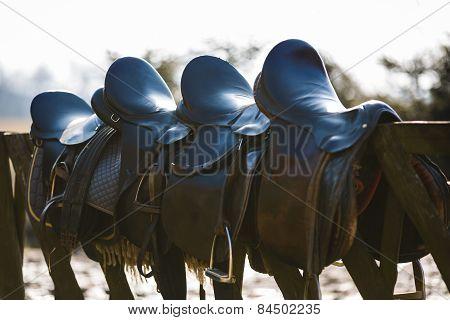 Leather Saddle Horse