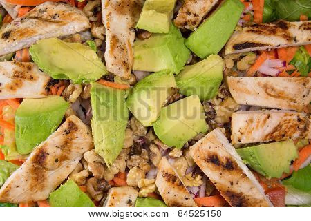 Grilled Chicken and Avocado Salad Closeup