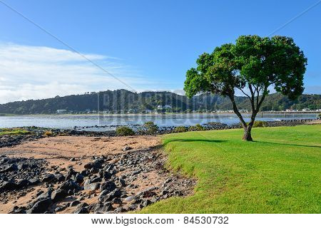 A scenic view from Waitangi Beach over Paihia coast landscape