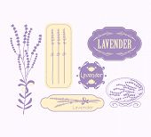 Vintage lavender background, aromatherapy and spa packaging  vector design poster