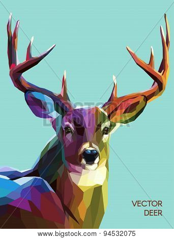 Deer polygonal illustration. Vector  eps 10