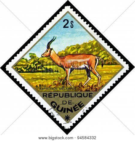 Vintage  Postage Stamp. Impala To Africa.