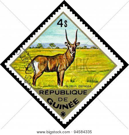 Vintage  Postage Stamp. Waterbuck To Africa.