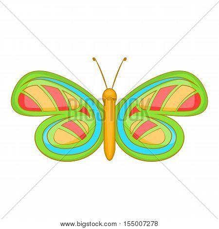 Little butterfly icon. Cartoon illustration of butterfly vector icon for web design