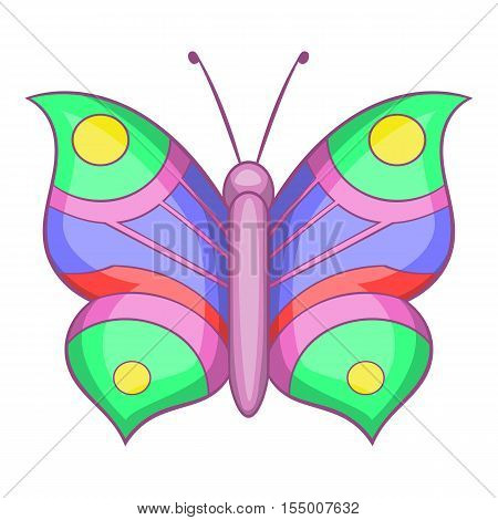 Butterfly with pattern on wings icon. Cartoon illustration of butterfly vector icon for web design