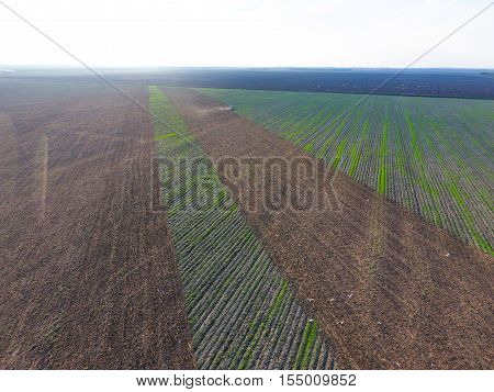Top View Of The Tractor That Plows The Field. Disking The Soil. Soil Cultivation After Harvest. Seag