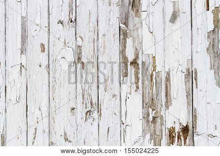 Old White Weathered Wooden Background No. 6