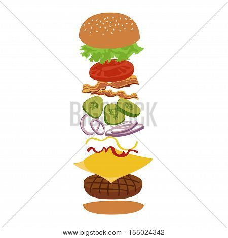 Burger isolated vector infographics illustration. Hamburger and ingredients illustration. Image of burger on white background.