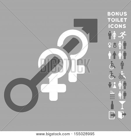 Harem icon and bonus man and lady restroom symbols. Vector illustration style is flat iconic bicolor symbols, dark gray and white colors, silver background.