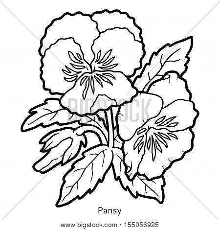 Coloring book for children, colorless flower Pansy