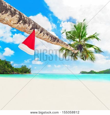 Red Santa hat on coconut palm tree at perfect tropical white sandy ocean beach. Holiday concept for New Years and Christmas Cards. Seychelles Mahe island.