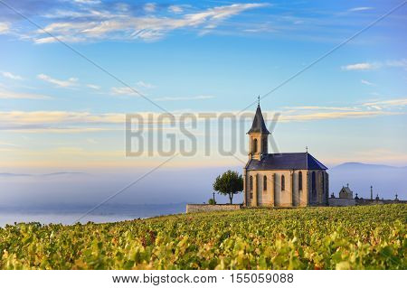 Vineyards And Church In Beaujolais With A Large Blue Sky At Sunrise