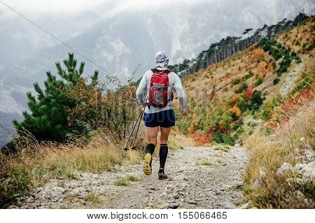 rear view of athlete runner in compression socks and nordic walking stick running on a mountain marathon
