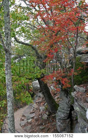 a mountain trail passes under boulders and autumn foliage