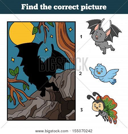 Find the correct picture by shadow, education game for children. Vampire bat and background