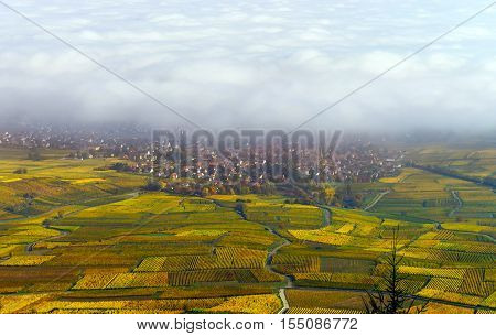 Beautiful White Foggy Layer Over Vineyards Of Alsace, France