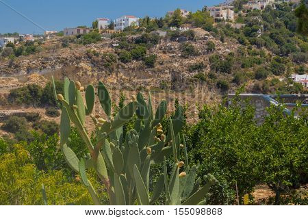 Agia Irini Greece. July 27. 2016: View to Agia Irini village from monastery.