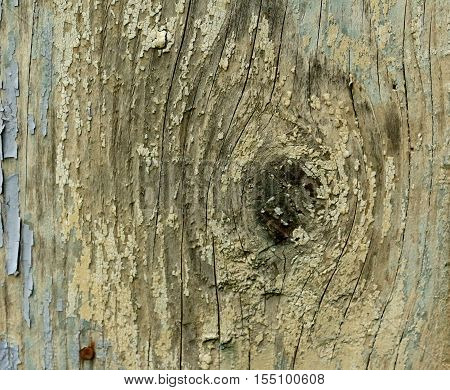 Dried out and cracking wood texture background