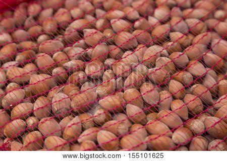Hazelnuts on a old wooden table. Hazelnut background.