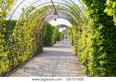 Passage through beautiful garden Multiple arches and decorated walls