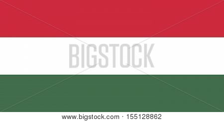 The Official vector flag of Hungary .