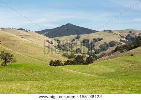 Fall Day in Mt. Diablo State Park, Contra Costa County, California, USA