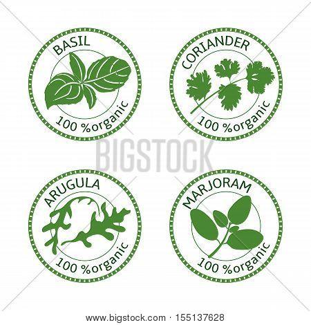 Set of herbs labels. 100 organic. Greenery collection. Vector illustration. Basil, arugula marjoram coriander