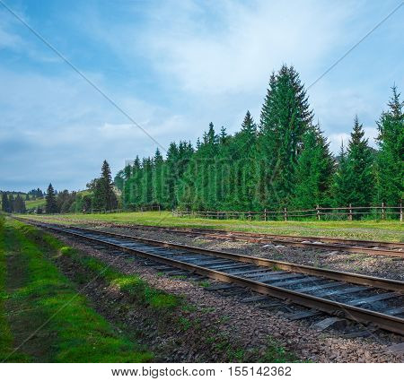 railroad summer day with green grass and trees