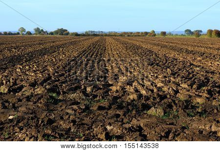 plough tracks in a muddy field in Maplethorpe, Lincolnshire