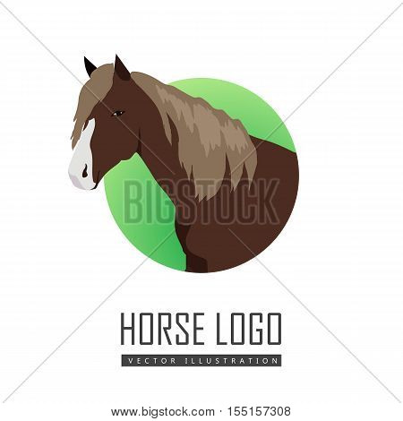 Sorrel horse with white muzzle vector. Flat design. Domestic animal. Country inhabitants concept. For farming, animal husbandry, horse sport logo illustrating. Agricultural species. Isolated on white