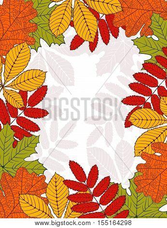 frame with autumn leaves - birch oak maple mountain ash chestnut